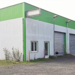Location Bureau Nemours 450 m²