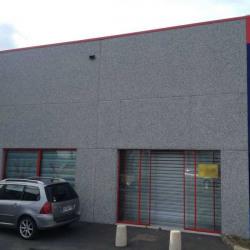 Location Local d'activités Seclin 333 m²