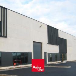 Vente Local d'activités Hallennes-lez-Haubourdin 322 m²