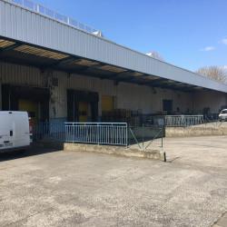 Location Local d'activités Villeneuve-d'Ascq 700 m²