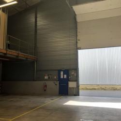 Location Local d'activités Rennes 555 m²
