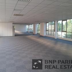 Location Local d'activités Bezons 2425 m²