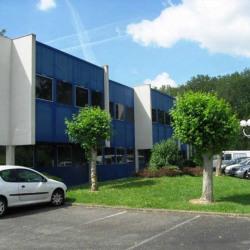 Location Bureau Ramonville-Saint-Agne 217 m²