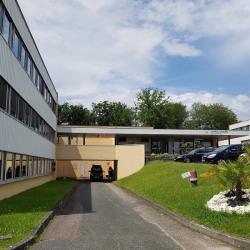Location Bureau Limoges 12 m²