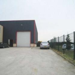 Location Local d'activités Méry-sur-Oise 544 m²
