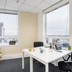 Location Bureau Fontenay-sous-Bois 34 m²