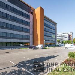 Location Bureau Toulouse (31300)