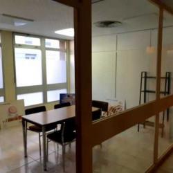 Location Bureau Lyon 7ème 37 m²