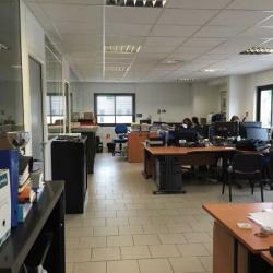 Location Bureau Gémenos 250 m²
