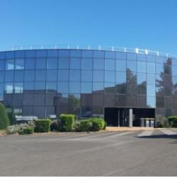 Location Bureau Gonesse 596 m²