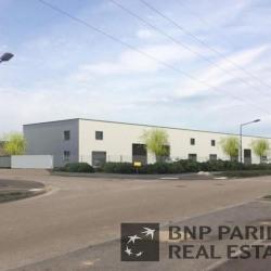 Vente Local d'activités Saint-Apollinaire 1048 m²