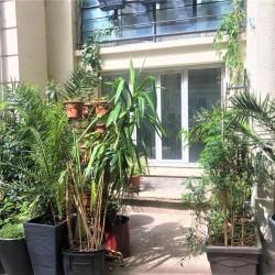 Location Bureau Paris 10ème 80 m²