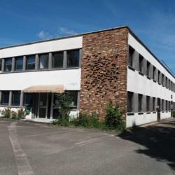 Location Local d'activités Trappes 275 m²