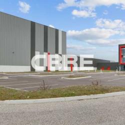 Location Entrepôt Saint-Vulbas 11444 m²