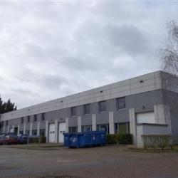 Location Local d'activités Épône 530 m²