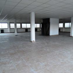 Vente Local d'activités Le Blanc-Mesnil 4050 m²