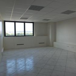 Location Bureau Villeurbanne 150 m²