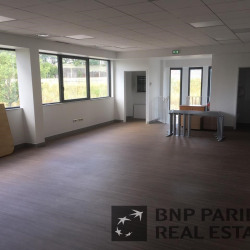 Location Local d'activités Sainte-Geneviève-des-Bois 1178 m²