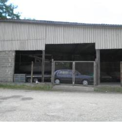 Vente Entrepôt Lalinde 343 m²