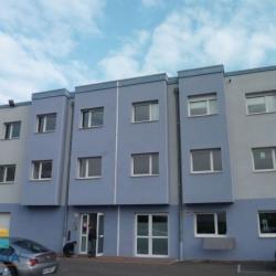 Location Local commercial Geispolsheim 54 m²