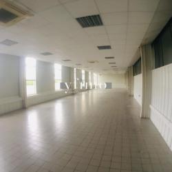 Vente Entrepôt Chanteloup-les-Vignes 3000 m²