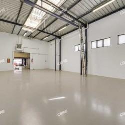 Location Local d'activités Arcueil 480 m²