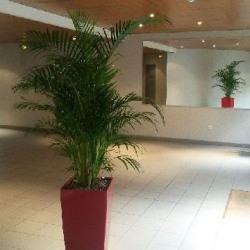 Location Bureau Colombes 95 m²