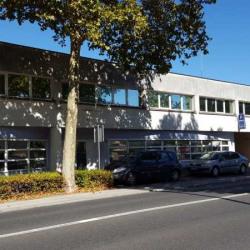 Vente Bureau Joué-lès-Tours 663 m²