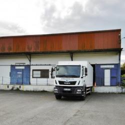 Location Bureau Salies-de-Béarn 0 m²