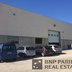 Location Local d'activités Neyron 108 m²