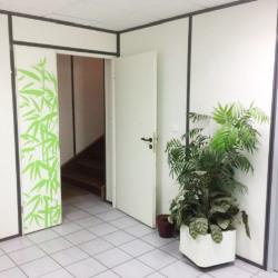 Location Bureau Couzon-au-Mont-d'Or 200 m²