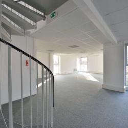 Location Local d'activités Saint-Thibault-des-Vignes 2556 m²