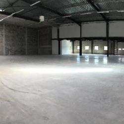 Location Local d'activités Taverny 439 m²