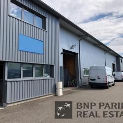 Vente Local d'activités Obernai 434 m²