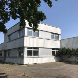 Vente Local d'activités Haguenau 3850 m²