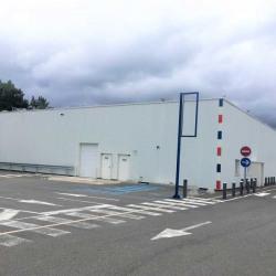 Location Local d'activités Castelnau-d'Estrétefonds 1247 m²