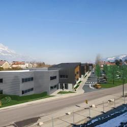 Vente Local d'activités Domène 4510 m²