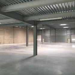 Location Local d'activités Lisses 535 m²