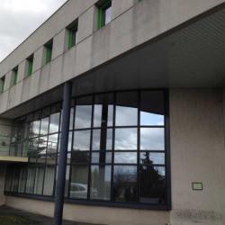 Location Local d'activités Jassans-Riottier 7324 m²