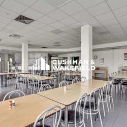 Vente Local d'activités Miribel 17529 m²