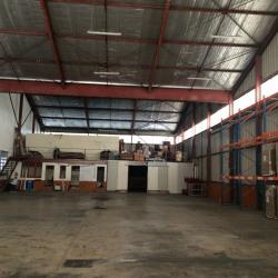 Location Local d'activités Lunel 870 m²