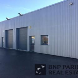 Vente Local d'activités Noyal-Châtillon-sur-Seiche 215 m²
