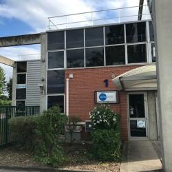 Location Local d'activités Saint-Thibault-des-Vignes 298 m²