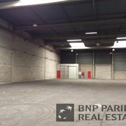 Location Entrepôt Marly-la-Ville 1120 m²