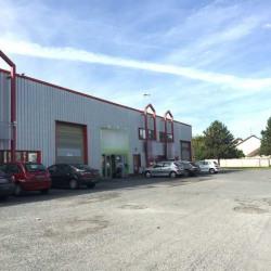 Location Local d'activités Savigny-sur-Orge 775 m²