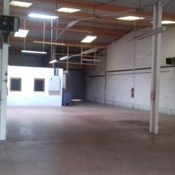 Location Local d'activités Puygouzon 450 m²