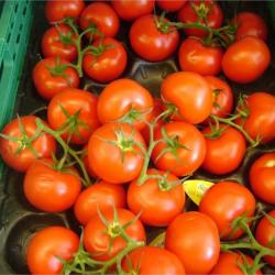 Fonds de commerce Alimentation Boussac