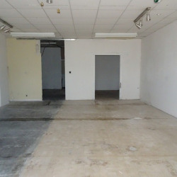 Location Local commercial Fonsorbes 91 m²