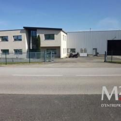 Location Local d'activités Saint-Quentin-Fallavier (38070)
