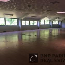 Location Local d'activités Lognes 703 m²